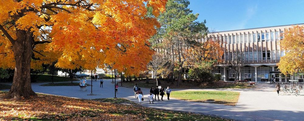 Fall 2020 image of Physics building