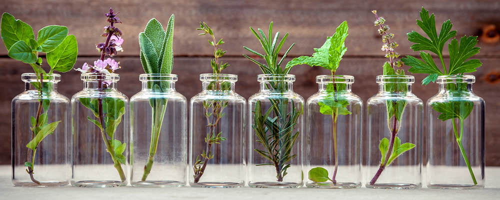Glass jar filled with greenery