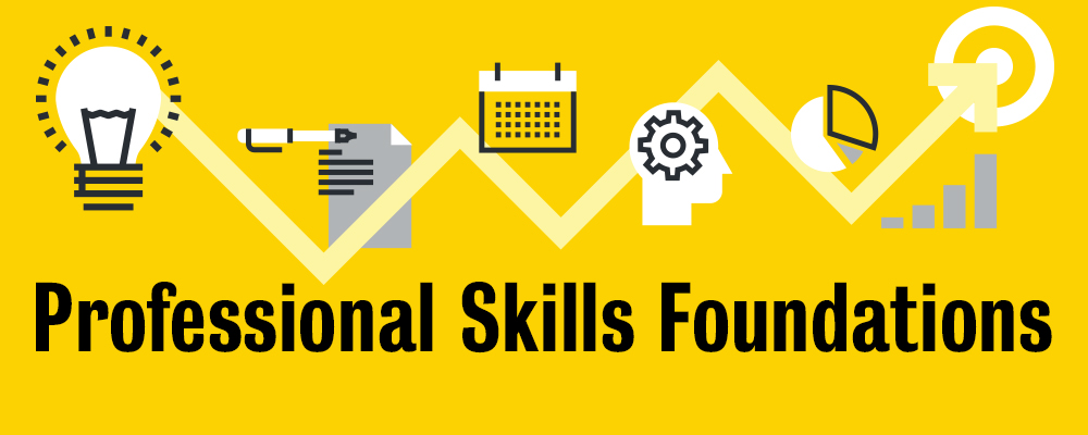 Professional skills foundations