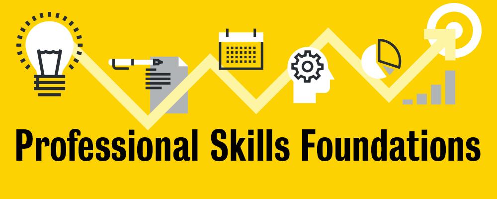 Professional skills foundations