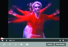 Swan Lake Vido Screenshot