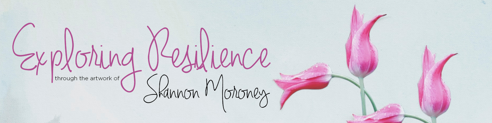 exploring resilience title banner