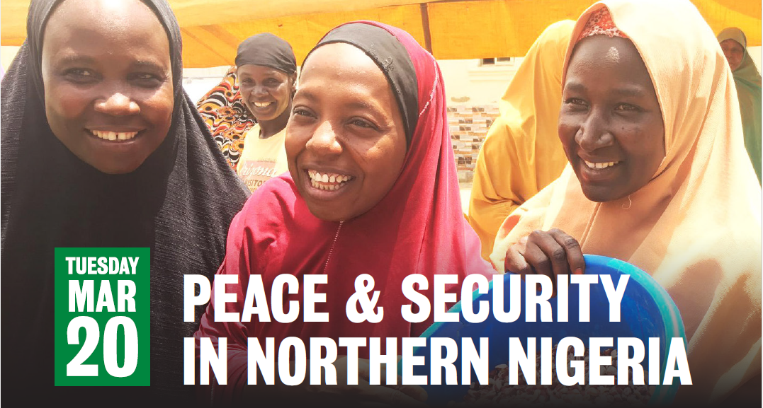 peace and security poster image