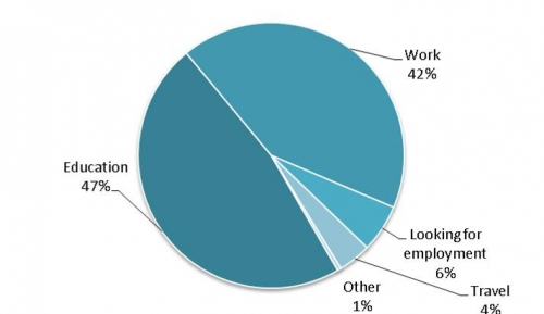 pie chart showing pursuits of AHS grads one year after graduation