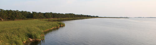 A panoramic view of the waterfront at Rondeau park