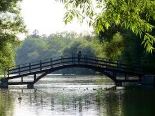 A person standing on a bridge looking at ducks in the water underneath