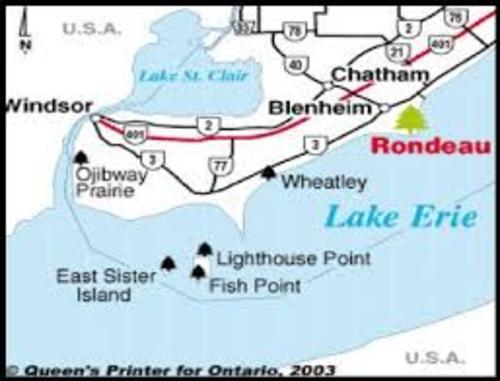 A map showing Rondeau park, Chatham, Blenheim, Windsor, Ojibway Prairie, East Sister Island, Lighthouse Point, and Fish Point around Lake Erie