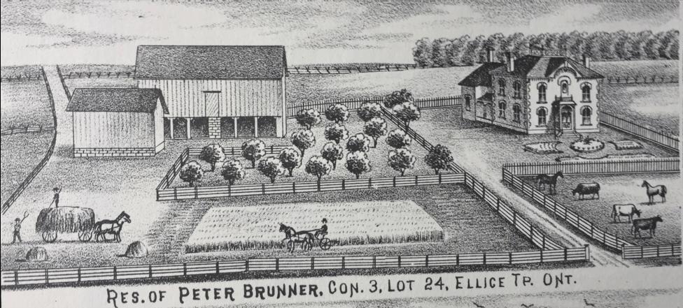 An illustration of a farm property