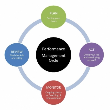Diagram Of Performance Management Cycle Human Resources