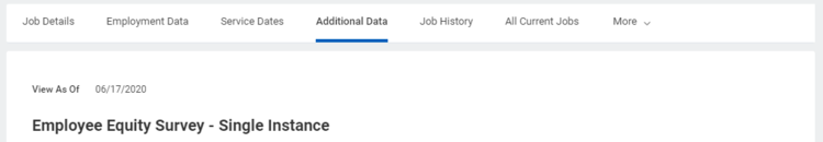 Additional Data Section of the workday profile
