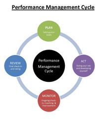 Diagram of the performance management cycle