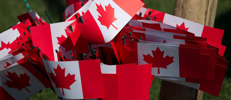 Cluster of Canada flags