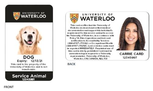 mock up of service animal design card. photo of a dog on one side and the owner of the dog on the other side of the card