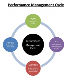 different stages in the performance cycle step 1 plan step 2 act step 3 monitor step three review