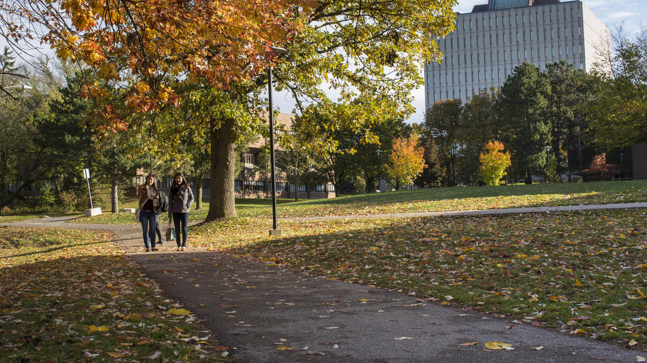 Students walk by Dana Porter Library during the fall