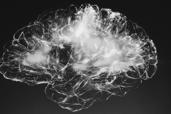 black and white outline of the brain