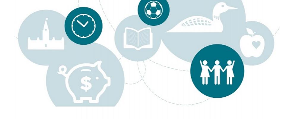 Bannière de Le Rapport national de l'ICM 2016 avec Icônes de domaine