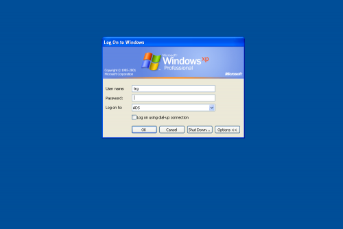 Windows login window