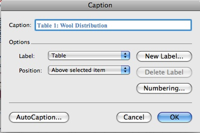 Caption options box