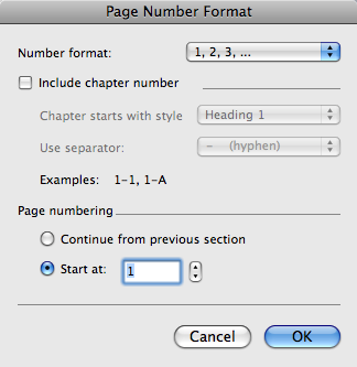 Page number format options box