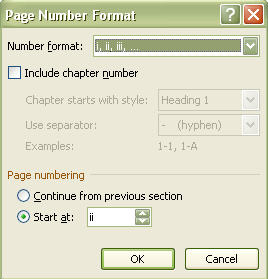 Page number option box