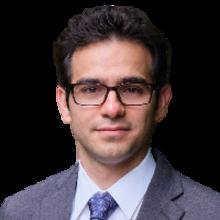 Hamed Shahsavan