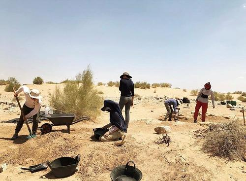 students doing archaeological field work in Jordan