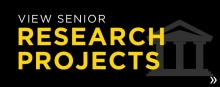 View senior research projects