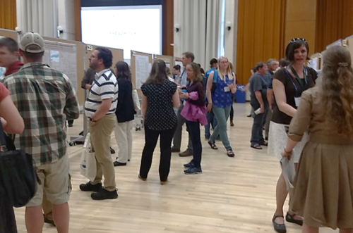 Poster session at IAGLR