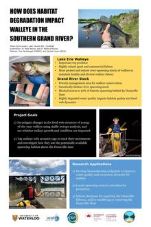 Walleye Habitat Degradation Infographic