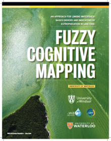 Fuzzy Cognative Mapping