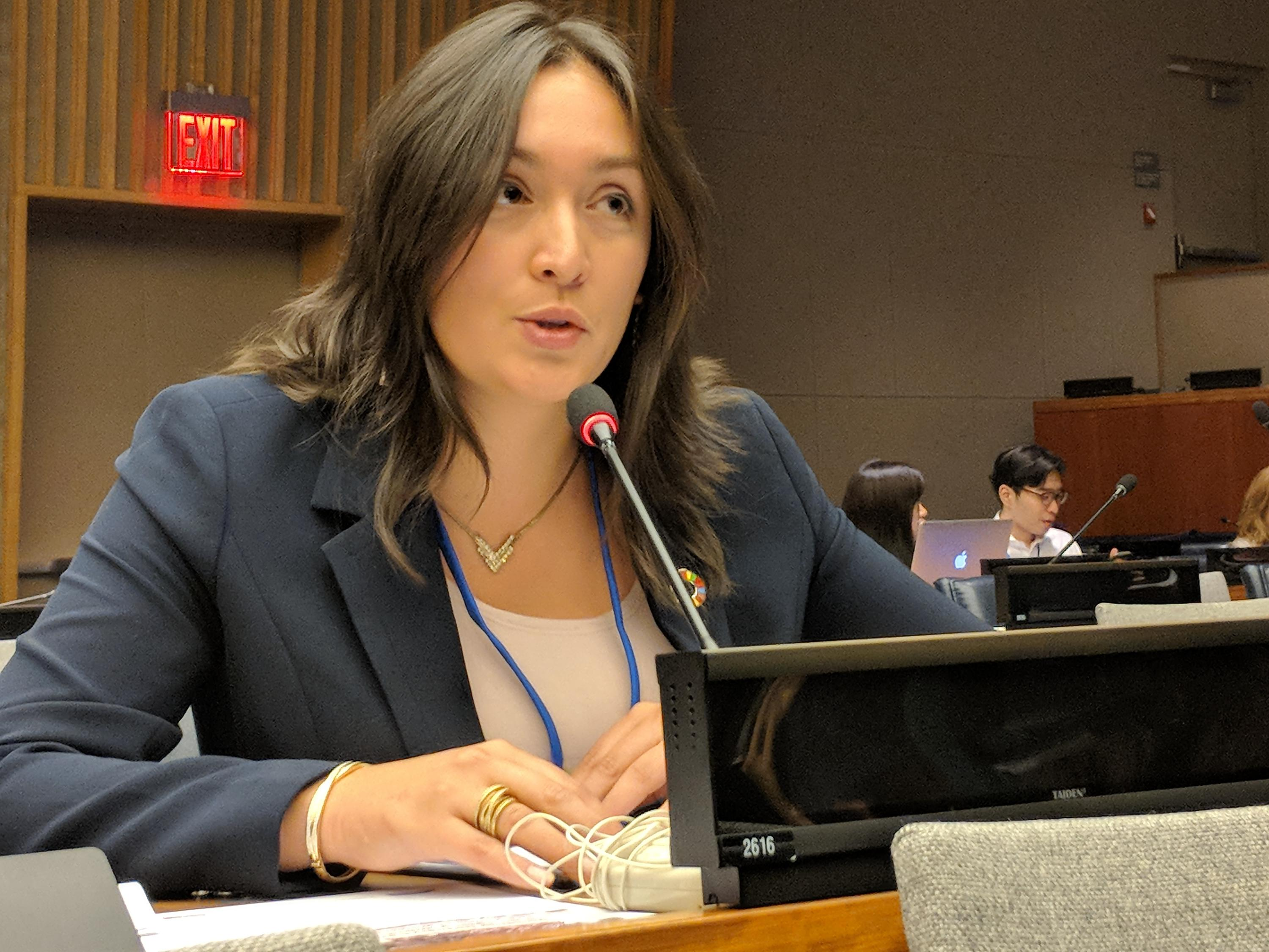 Elaine Ho presenting to the UN