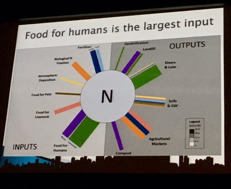 Photo of Figure indicating food for humans is the largest input of Nitrogen.