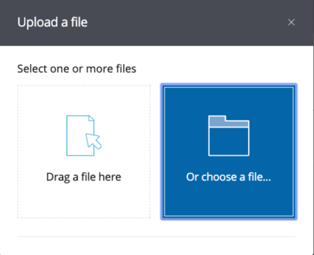 upload file button
