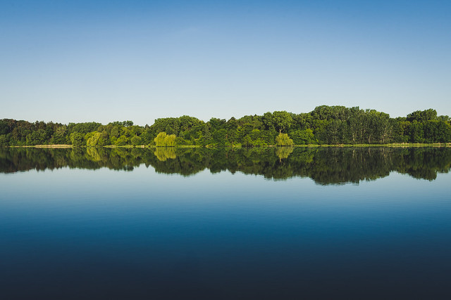 Trees along horizon of water body