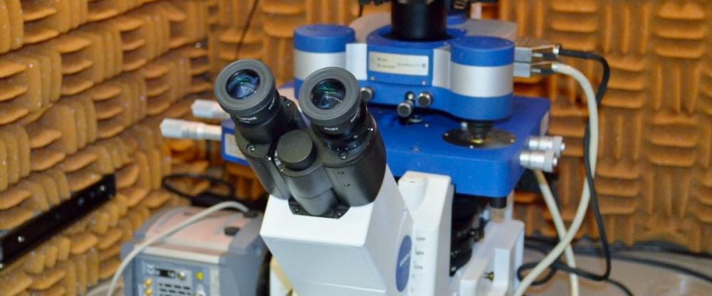 JPK Atomic Force Microscope