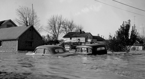 houses and cars submerged in flood waters