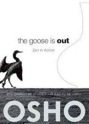Zen in Action book cover