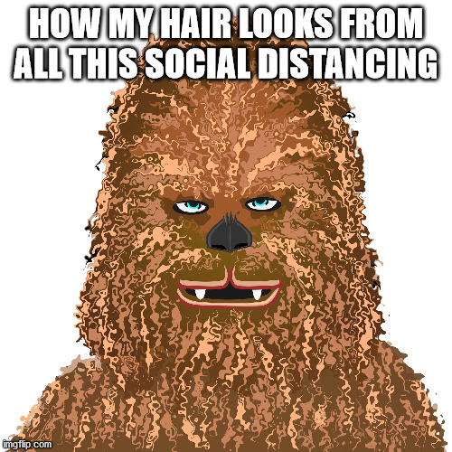 Chewbacca painting meme