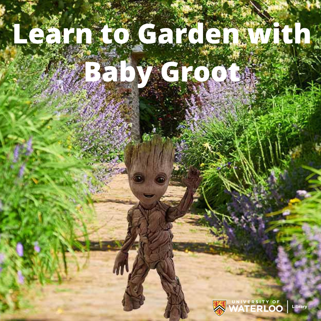 groot running down a gravel path