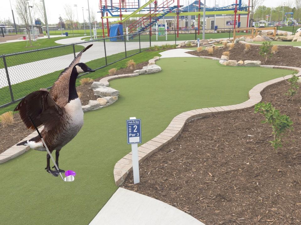goose playing mini golf