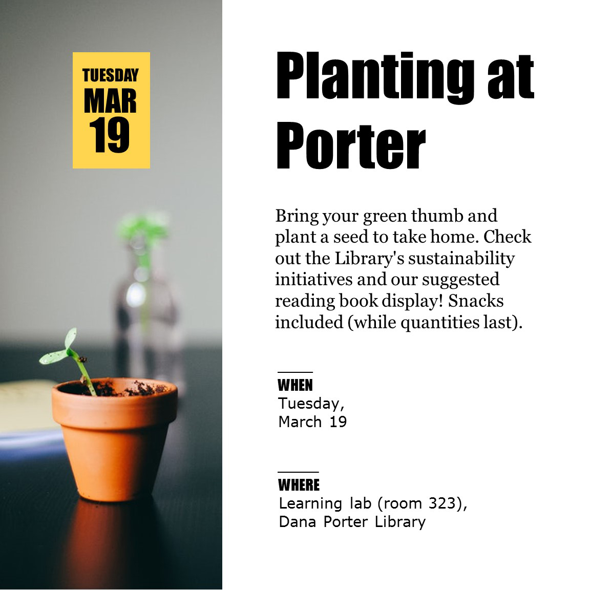 Planting at Porter