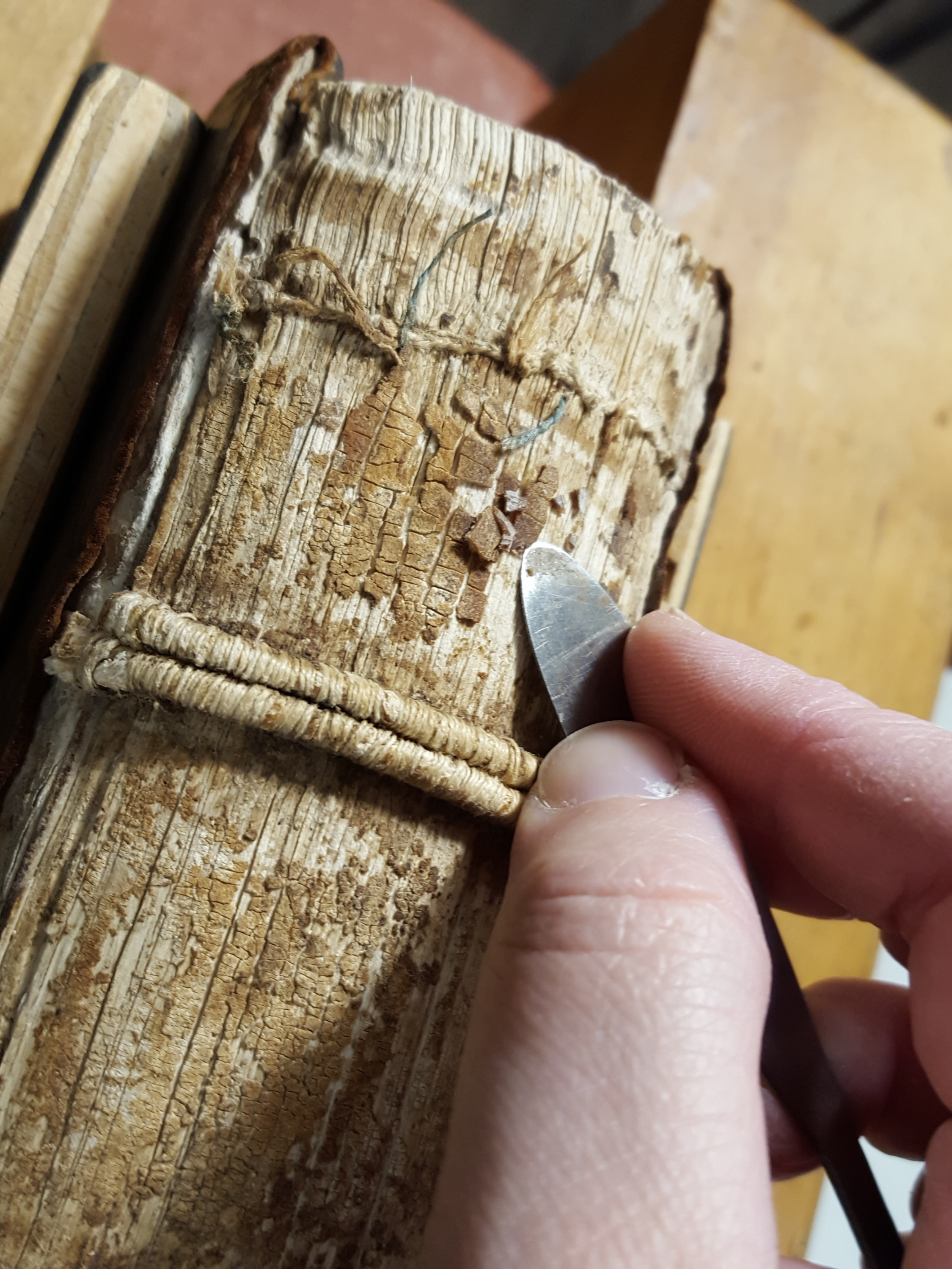 Spine of book being cleaned