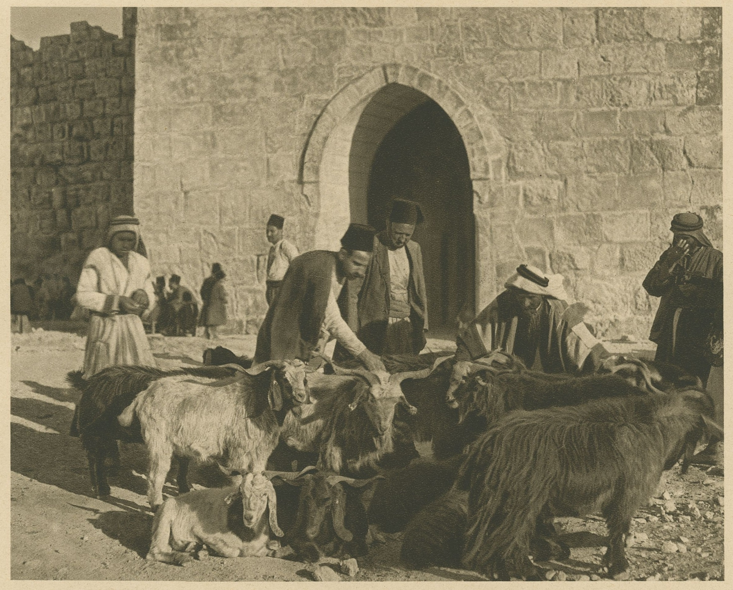 Men with herd in front of door of a building