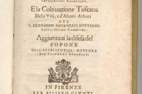 Trattato Della coltivazione Delle Viti E Del Frutto: front page.