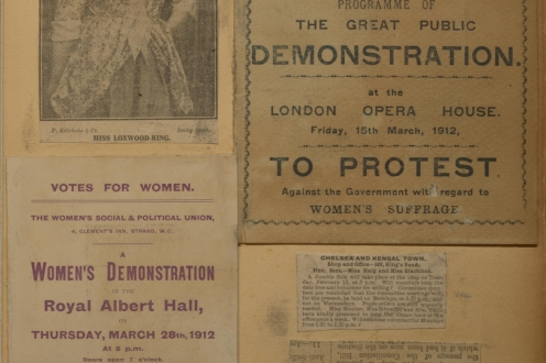Photo and demonstration flyers.