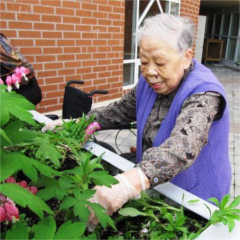 Older adult gardening at the Yee Hong Centre for Geriatric Care.