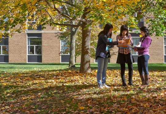 Female students studying outside on a fall day