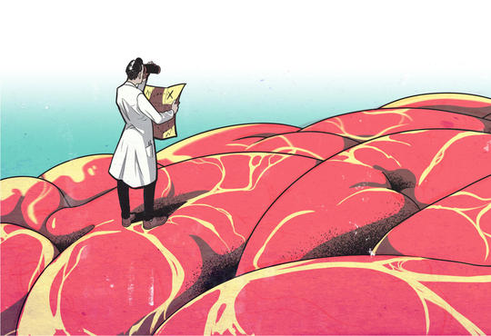 illustration of a scientist standing on large brain