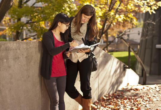 students looking at notes